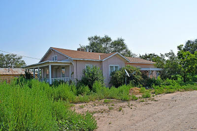 Valencia County Single Family Home For Sale: 2963 State Highway 47