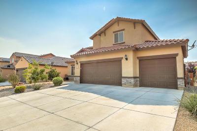 Rio Rancho Single Family Home For Sale: 617 Palo Alto Drive NE
