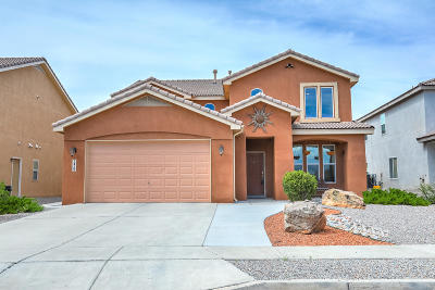 Rio Rancho Single Family Home For Sale: 2425 Camino Seville SE