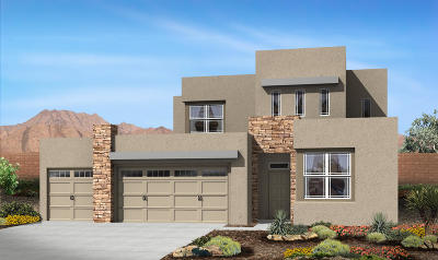Albuquerque Single Family Home For Sale: 2132 Torrent Drive NW