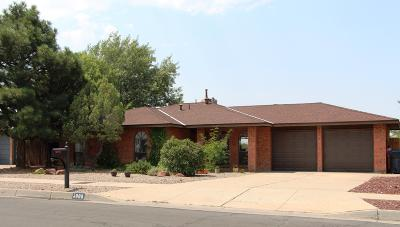 Single Family Home For Sale: 5909 Carruthers NE