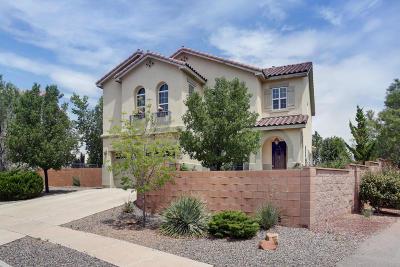 Rio Rancho Single Family Home For Sale: 6835 Wrangell Loop NE