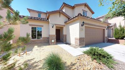 Rio Rancho Single Family Home For Sale: 515 Palo Alto Drive NE