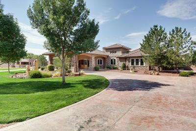 Bernalillo Single Family Home For Sale: 680 Camino Vista Rio