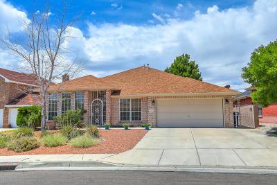 Albuquerque Single Family Home For Sale: 4304 La Paloma Road NW