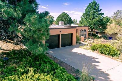Albuquerque Single Family Home For Sale: 14224 Grand Avenue NE