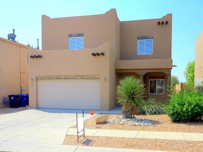 Albuquerque Single Family Home For Sale: 8504 Old Caballero Avenue SW
