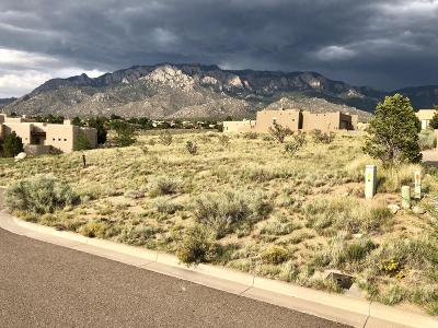 Albuquerque Residential Lots & Land For Sale: 6804 Pino Arroyo Court NE