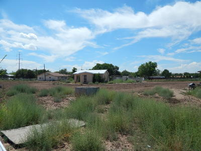 Albuquerque Single Family Home For Sale: 2501 Metzgar Place SW #C
