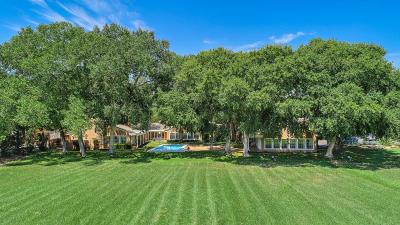Los Ranchos Single Family Home For Sale: 7313 Rio Grande Boulevard NW