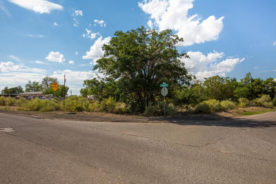 Albuquerque Residential Lots & Land For Sale: 6411 Niese Drive SW