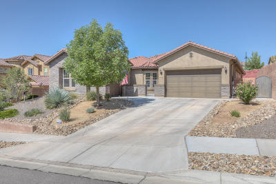 rio rancho Single Family Home For Sale: 109 Los Miradores Drive NE