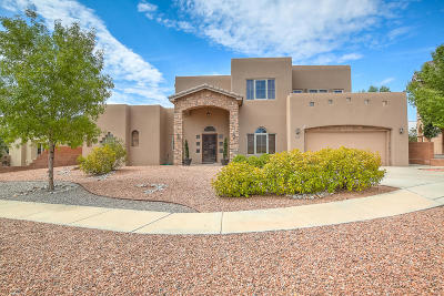 Albuquerque Single Family Home For Sale: 4624 Albany Court NW