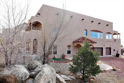 Albuquerque Single Family Home For Sale: 401 Camino De La Sierra NE
