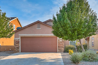 Rio Rancho Single Family Home For Sale: 916 Waterfall Drive NE