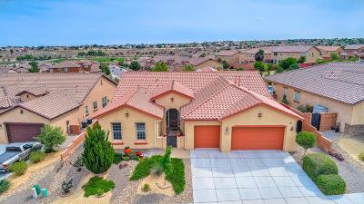 rio rancho Single Family Home For Sale: 3722 Linda Vista Avenue NE