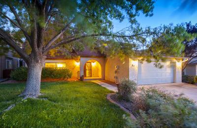 Single Family Home For Sale: 9516 Peralta Road NE
