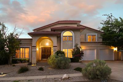 Albuquerque Single Family Home For Sale: 1225 Sierra Larga Drive NE