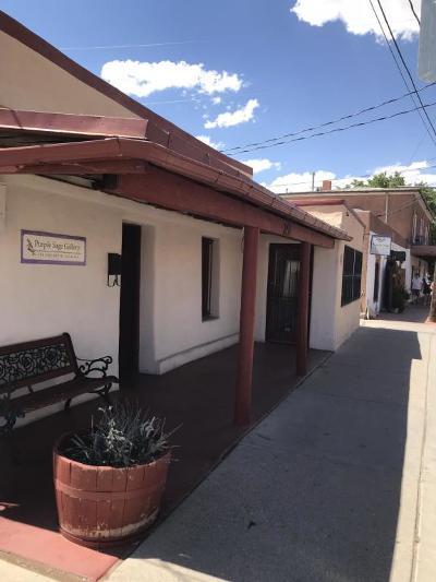Albuquerque Single Family Home For Sale: 201 San Felipe Street NW