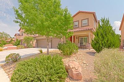 Single Family Home For Sale: 38 Monte Vista Drive NE