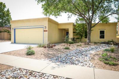 Albuquerque Single Family Home For Sale: 9632 Bolack Drive NE