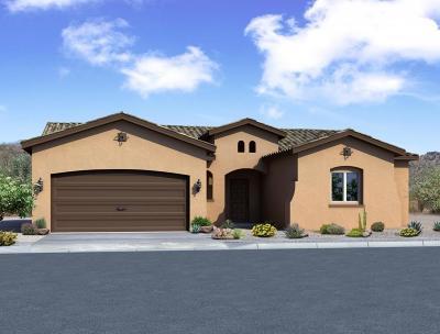 rio rancho Single Family Home For Sale: 2806 La Luz Circle NE