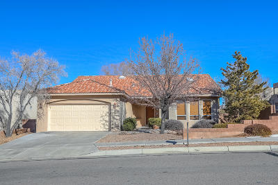 Albuquerque Single Family Home For Sale: 7339 Blue Cypress Avenue NE