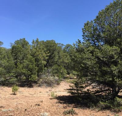 Bernalillo County Residential Lots & Land For Sale: 47 San Pedro View