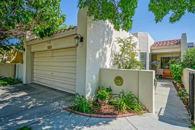 Albuquerque Single Family Home For Sale: 13116 Nandina Lane SE