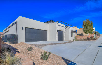 Albuquerque NM Single Family Home For Sale: $475,000