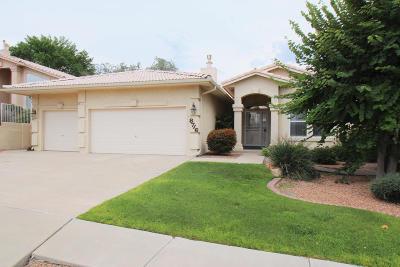 Single Family Home For Sale: 8716 New Hampton Road NE