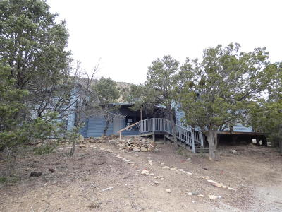 Tijeras, Cedar Crest, Sandia Park, Edgewood, Moriarty, Stanley Single Family Home For Sale: 133 Rincon Loop