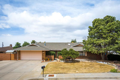 Albuquerque Single Family Home For Sale: 1529 Bush Court SE