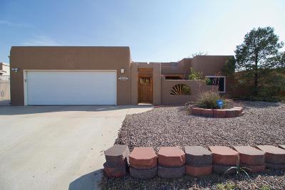 Albuquerque Single Family Home For Sale: 4512 Benton Avenue NW