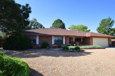 Albuquerque Single Family Home For Sale: 1120 Castellano Court SE