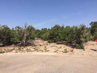 Bernalillo County Residential Lots & Land For Sale: 14 Zia Ct.