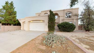Albuquerque Single Family Home For Sale: 9120 Laura Lee Place NW