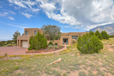 Albuquerque NM Single Family Home For Sale: $1,295,000