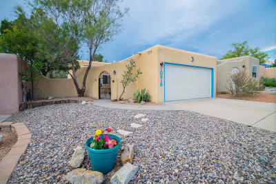 Albuquerque Single Family Home For Sale: 10315 Cueva Del Oso NE