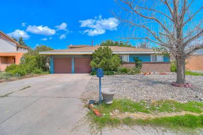 Albuquerque Single Family Home For Sale: 2516 Hiawatha Drive NE