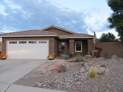 Albuquerque Single Family Home For Sale: 10527 Sorrento Drive NW