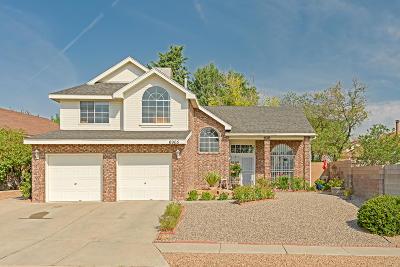Albuquerque Single Family Home For Sale: 6905 Sedge Avenue NW