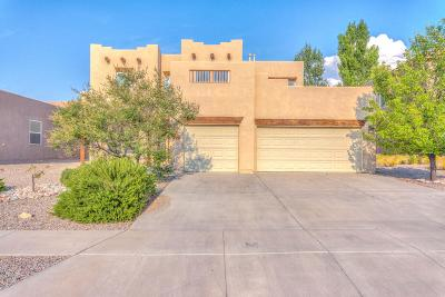 Rio Rancho Single Family Home For Sale: 1938 Western Hills Drive SE