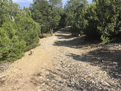 Bernalillo County Residential Lots & Land For Sale: Eagle Trail
