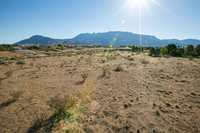 Albuquerque Residential Lots & Land For Sale: 10010 Glendale Avenue NE