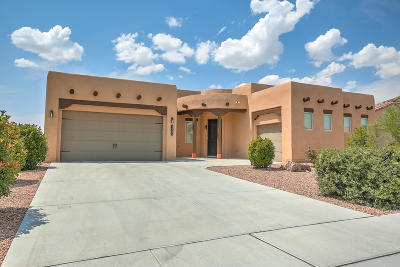 Rio Rancho NM Single Family Home For Sale: $375,000