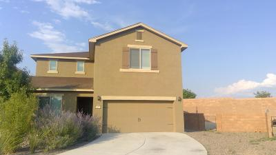Rio Rancho Single Family Home For Sale: 117 El Camino Loop NW