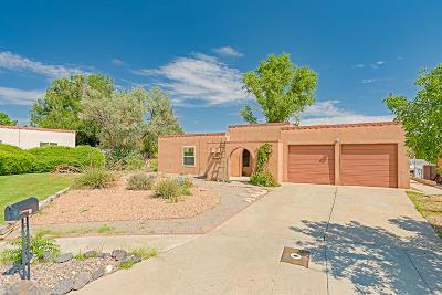 Albuquerque Single Family Home For Sale: 6733 Rustler Court NW