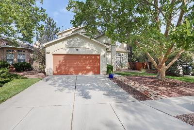 Albuquerque Single Family Home For Sale: 4127 Rancho Grande Place NW