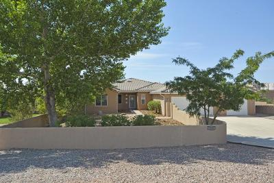 Rio Rancho Single Family Home For Sale: 7000 Oersted Road NE